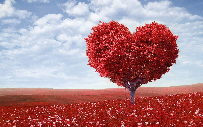 Geloven met je hart